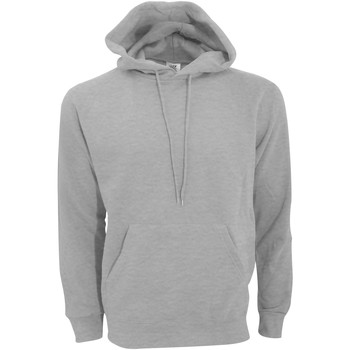 Vêtements Homme Sweats Sg Hooded Gris clair
