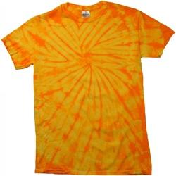 Vêtements Enfant T-shirts manches courtes Colortone Spider Or
