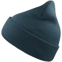 Accessoires textile Bonnets Atlantis Beanie Bleu
