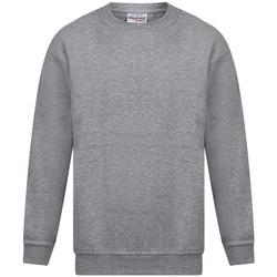 Vêtements Homme Sweats Absolute Apparel Magnum Gris