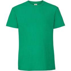 Vêtements Homme T-shirts manches courtes Fruit Of The Loom 61422 Vert