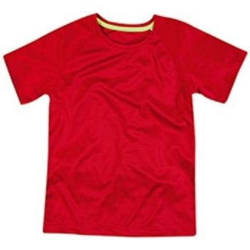 Vêtements Enfant T-shirts manches courtes Stedman Raglan Rouge