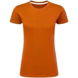 Vêtements Femme T-shirts manches courtes Sg Perfect Orange
