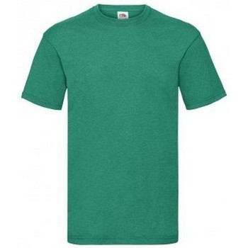 Vêtements Homme T-shirts manches courtes Fruit Of The Loom Valueweight Vert chiné