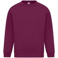 Vêtements Homme Sweats Absolute Apparel Sterling Bordeaux