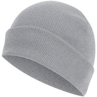 Accessoires textile Bonnets Absolute Apparel Knitted Gris perle