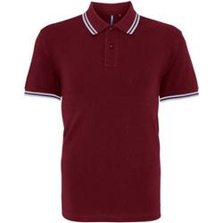 Vêtements Homme Polos manches courtes Asquith & Fox Classics Bordeaux/bleu ciel
