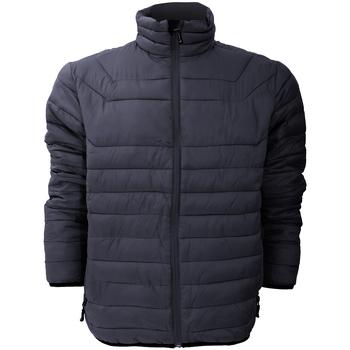 Vêtements Homme Doudounes Stormtech Altitude Bleu marine