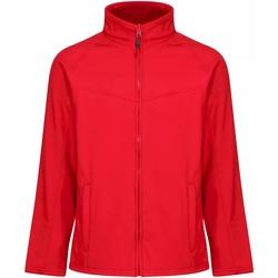Vêtements Homme Coupes vent Regatta Uproar Rouge / gris