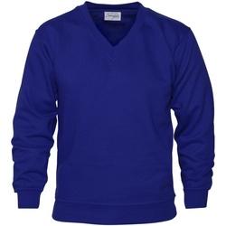 Vêtements Homme Sweats Absolute Apparel  Bleu roi
