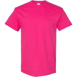Vêtements Homme T-shirts manches courtes Gildan Heavy Rose