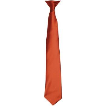 Vêtements Homme Cravates et accessoires Premier PR755 Marron clair