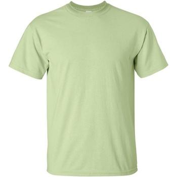 Vêtements Homme T-shirts manches courtes Gildan Ultra Pistache