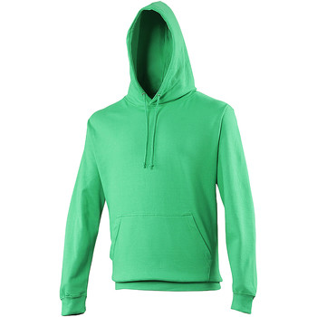 Vêtements Sweats Awdis Hooded Vert clair