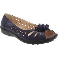 Chaussures Femme Ballerines / babies Boulevard Casual Bleu marine