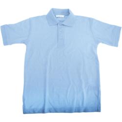 Vêtements Garçon Polos manches courtes Kustom Kit KK406 Bleu clair