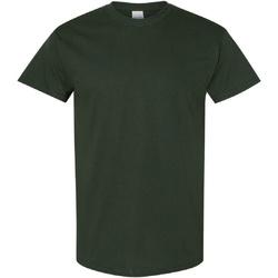 Vêtements Homme T-shirts manches courtes Gildan Heavy Vert forêt