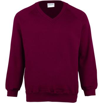 Vêtements Enfant Sweats Maddins Coloursure Bordeaux