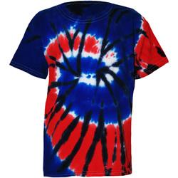 Vêtements Enfant T-shirts manches courtes Colortone TD02B Indépendance