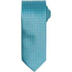 Vêtements Homme Cravates et accessoires Premier Puppy Turquoise