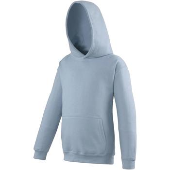 Vêtements Enfant Sweats Awdis Hooded Bleu ciel