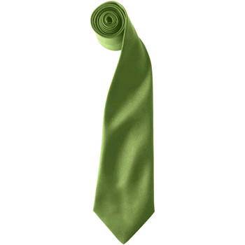 Vêtements Homme Cravates et accessoires Premier  Vert oasis
