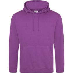 Vêtements Sweats Awdis College Violet vif