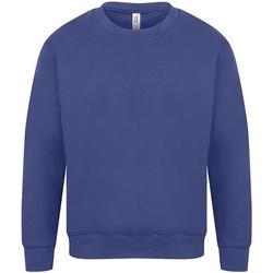 Vêtements Homme Sweats Casual Classics Original Bleu roi