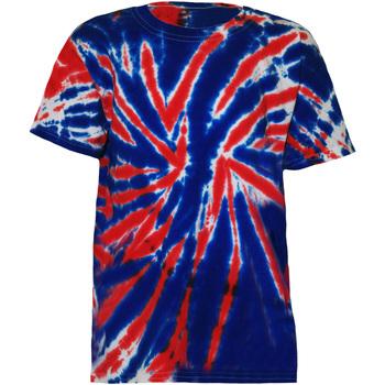 Vêtements Enfant T-shirts manches courtes Colortone TD02B Union Jack