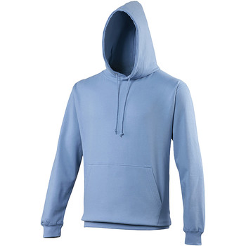 Vêtements Sweats Awdis College Bleuet