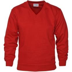 Vêtements Homme Sweats Absolute Apparel  Rouge