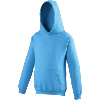 Vêtements Enfant Sweats Awdis Hooded Bleu saphir