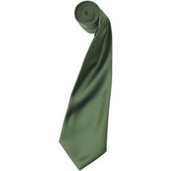 Vêtements Homme Cravates et accessoires Premier Satin Olive