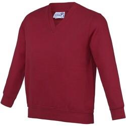 Vêtements Enfant Pulls Awdis Academy Rouge foncé