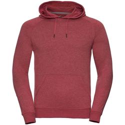 Vêtements Homme Sweats Russell HD Sweat à capuche RW5504 Rouge marne