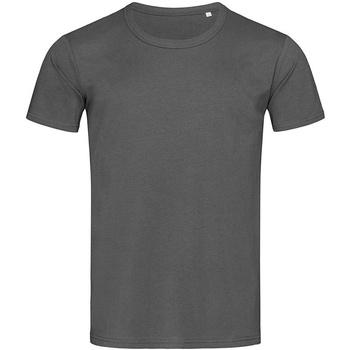 Vêtements Homme T-shirts manches courtes Stedman Stars Stars Gris ardoise