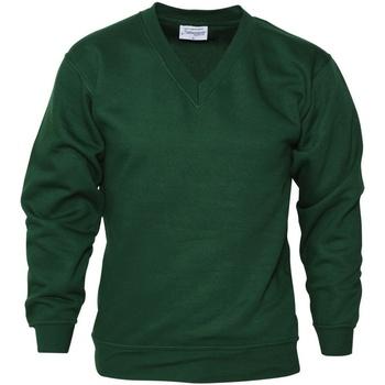 Vêtements Homme Sweats Absolute Apparel  Vert sapin