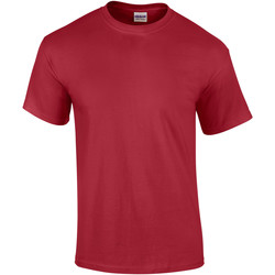 Vêtements Homme T-shirts manches courtes Gildan Ultra Rouge cardinal