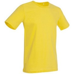 Vêtements Homme T-shirts manches courtes Stedman Stars Morgan Jaune