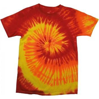 Vêtements Femme T-shirts manches courtes Colortone Rainbow Flamme
