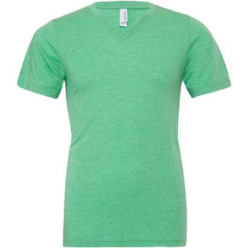Vêtements Homme T-shirts manches courtes Bella + Canvas Canvas Vert
