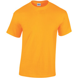 Vêtements Enfant T-shirts manches courtes Gildan 5000B Or