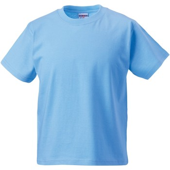 Vêtements Enfant T-shirts manches courtes Jerzees Schoolgear Classics Bleu ciel
