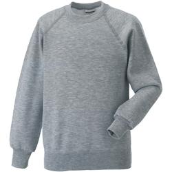 Vêtements Enfant Sweats Jerzees Schoolwear Raglan Gris clair