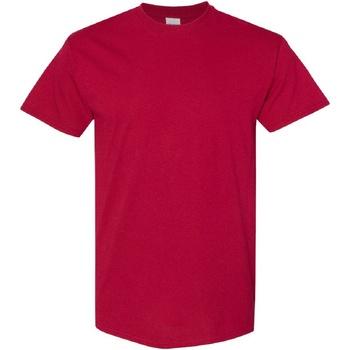 Vêtements Homme T-shirts manches courtes Gildan Heavy Rouge cardinal