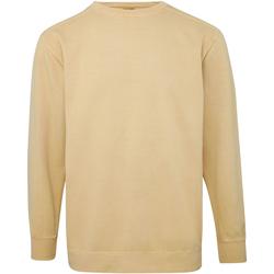 Vêtements Homme Sweats Comfort Colors CO040 Jaune sable