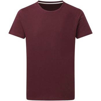Vêtements Homme T-shirts manches courtes Sg Perfect Bordeaux