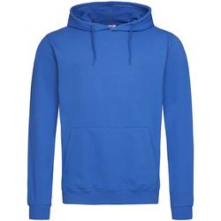 Vêtements Homme Sweats Stedman Classic Bleu roi
