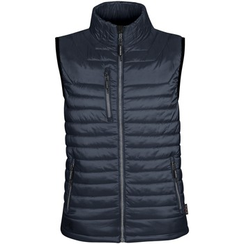 Vêtements Homme Gilets / Cardigans Stormtech Thermal Bleu marine/Gris foncé