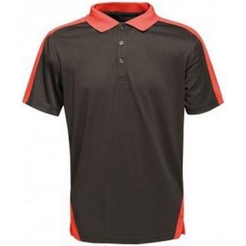 Vêtements Homme Polos manches courtes Regatta Contrast Noir / rouge